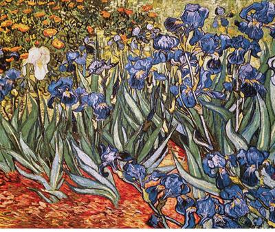 Tapisserie les iris bleus de Van Gogh